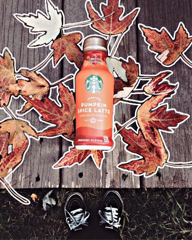 🍁#freetoedit #fall #fromabove