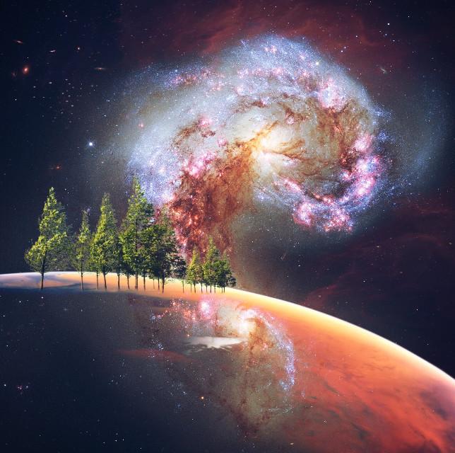 #freetoedit #fantasy #space #trees