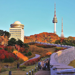 travel automn colorful nature southkorea