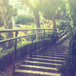 gradientbrush editedeffect stairs nature pretty freetoedit