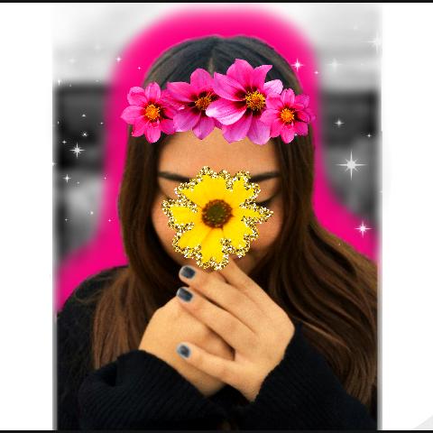 Flores Colores Amarillo Rosado Blancoynegro Flor Giraso
