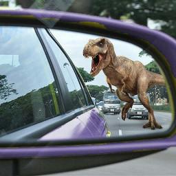 dinosaur dinosaurs dinosaurus trex t-rex