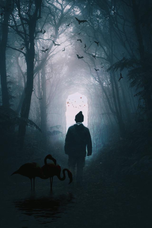 watch tutorials👉https://www.youtube.com/channel/UCwjyCuqVJ2BiyhEbFI6l7zg  #doubleexposure  #thedoubleexposurelove #remix @dtsdk @picsart #dtsdk #interesting #art #night #nature #cool #coolpic #coolpic💖 #darkforest #dark #birds #bird #freetoedit