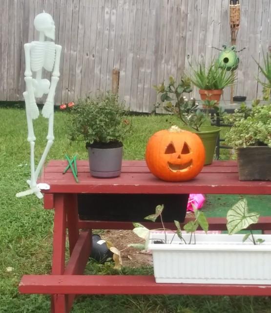 #MyPumpkin