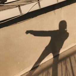 FreeToEdit cream brown shadow