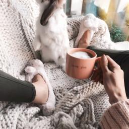 loveyou cute bunny goodmorning whitebunny