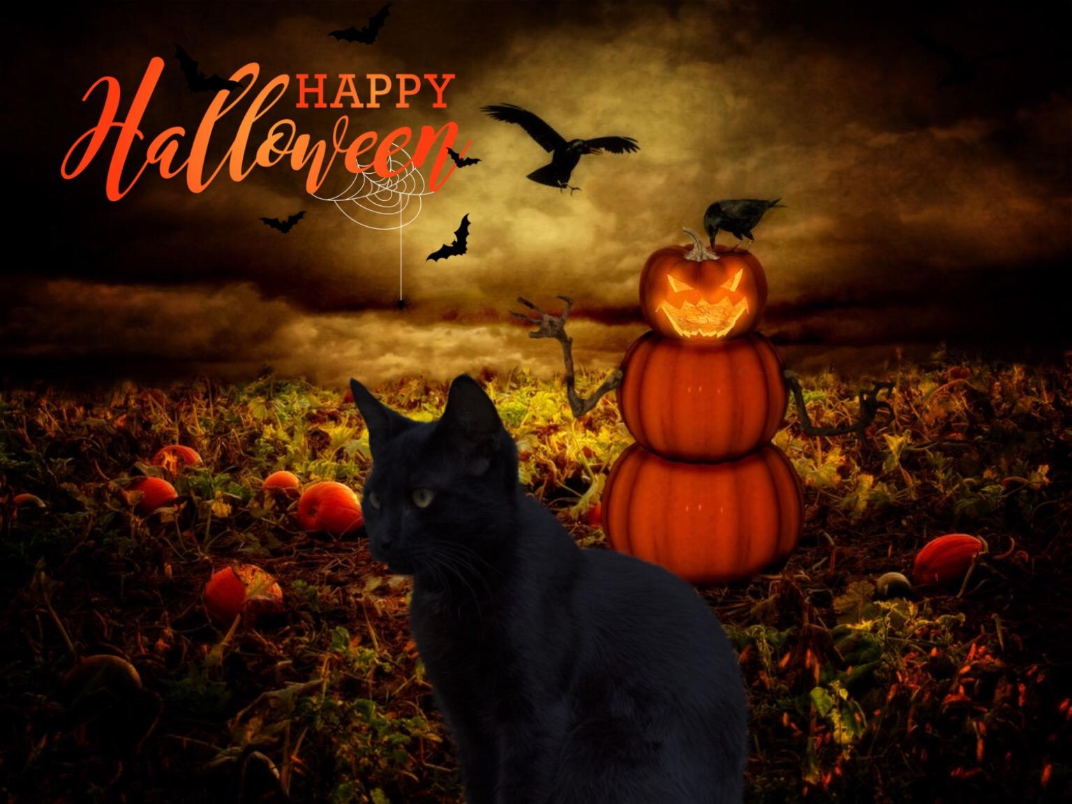 милые хэллоуинские картинки огромной