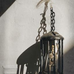 freetoedit skeleton cage halloweendecoration lightandshadow