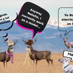 freetoedit deer deerseason deerdate date