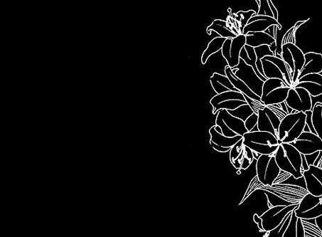 #freetoedit #overlay#editingneed#text#texture#black#white