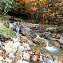 photography nature autumn mountains pyrenees freetoedit