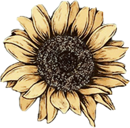 Sunflower Retro Vintage Drawing Yellow Aesthetic Sunflo