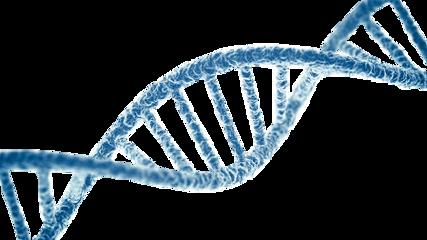 freetoedit dna dns desoxiribonukleinsäure biology