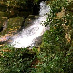 freetoedit naturephotography