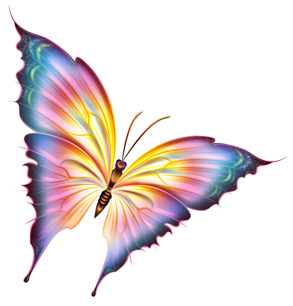 #freetoedit #ftestickers #dt #butterfly #butterflies #colorful