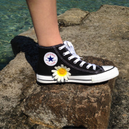 converse shoe flower pcfavoriteshoes favoriteshoes freetoedit