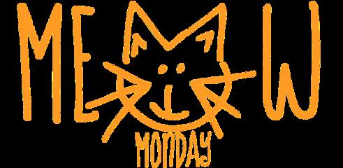 meow monday meowmonday ftestickers freetoedit