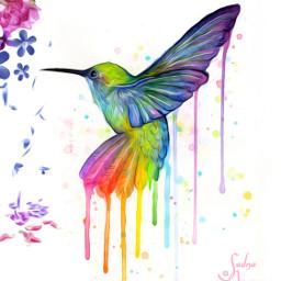 bird colorful flowers ilikethispicture freetoedit