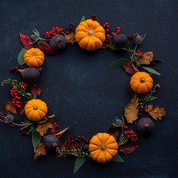 pumpkin decoration wreath thanksgiving autumn freetoedit