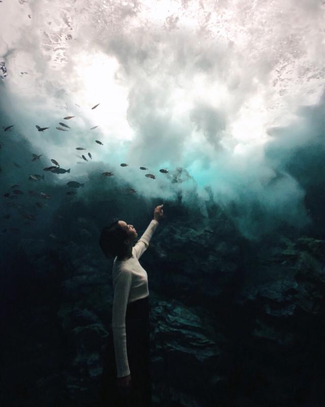 #freetoedit #portrait #girl #photography #iPhone #Japan #Japanese #aquarium