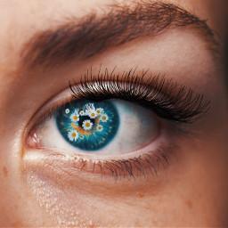 eyeart freetoedit eye art makeup