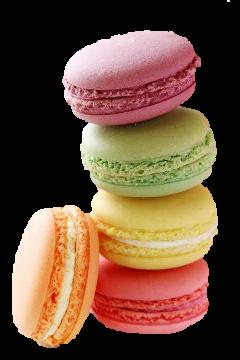 Popular And Trending Macaron Stickers On Picsart