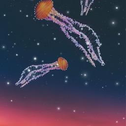 freetoedit stars constellations jellyfish sparkles