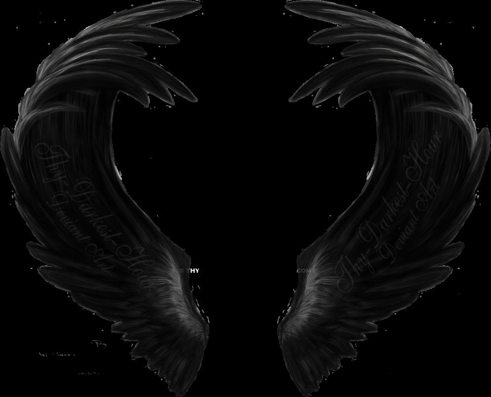 выглядит сочетание что за фоторедактор крылья сказать