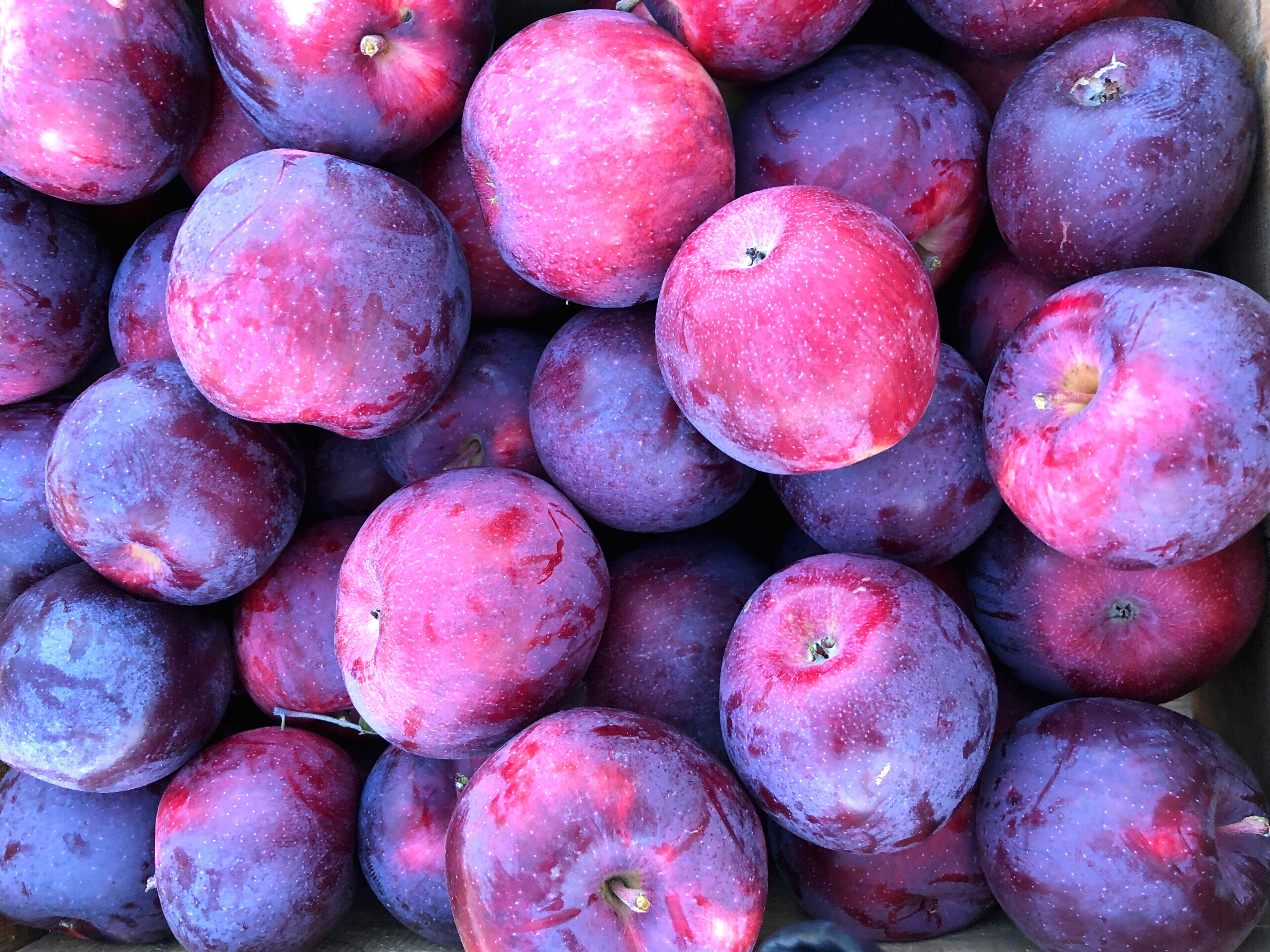 #freetoedit #apples #nofilter #purple #backgrounds #fruit #highangle #healthyeating #pink #red