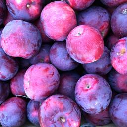 freetoedit apples nofilter purple backgrounds
