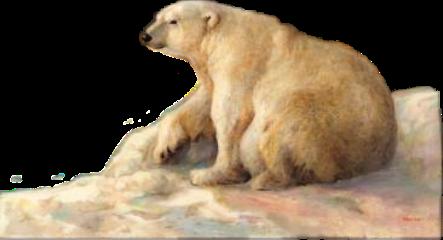 freetoedit scpolarbear polarbear