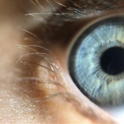 macro macrophotography blue closeup eyes freetoedit