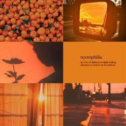 orange orangeaesthetic orangeaestheticbackground background aesthetic