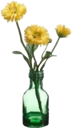 flowers yellow vase green yellowaesthetic freetoedit