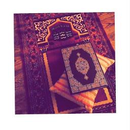 quran islam freetoedit