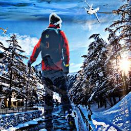 freetoedit winter winterscenes wintertime