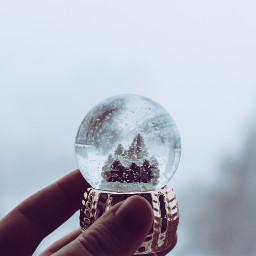 christmas winter freetoedit