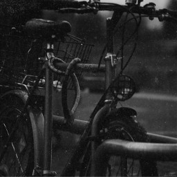 rainy photography bicycle blackandwhite december freetoedit
