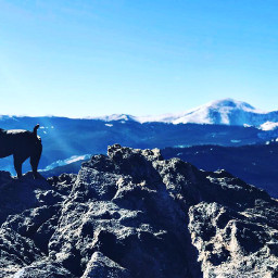 freetoedit mountaingoatbells mountainlyfe adventuretime highaltitude