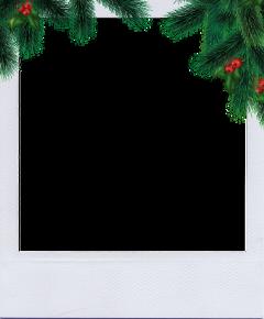 christmas polaroid ftestickers freetoedit