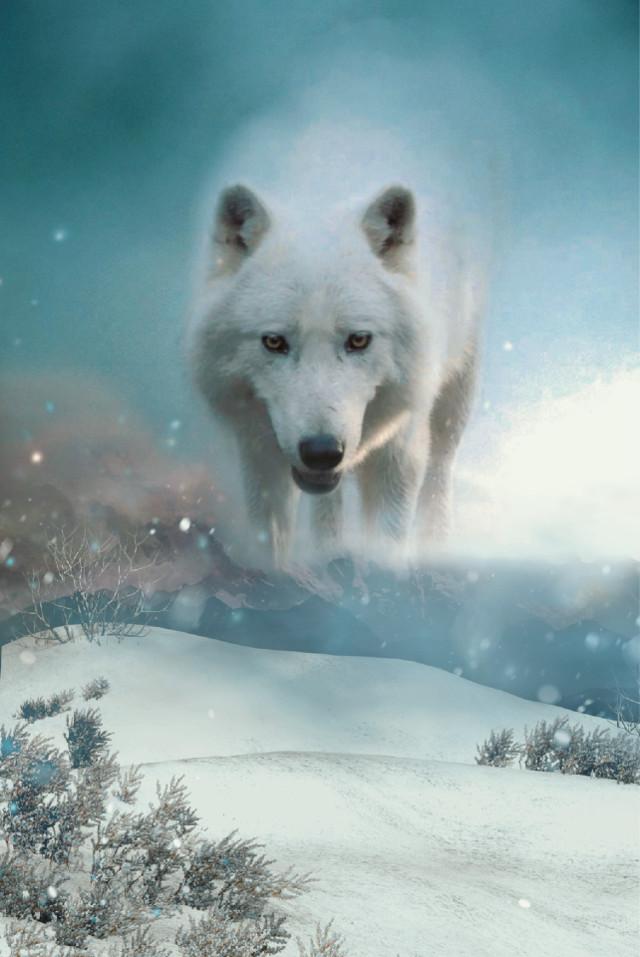 #freetoedit #madewithpicsart #remixit #newbrushes #@sona75 #SnowBrush