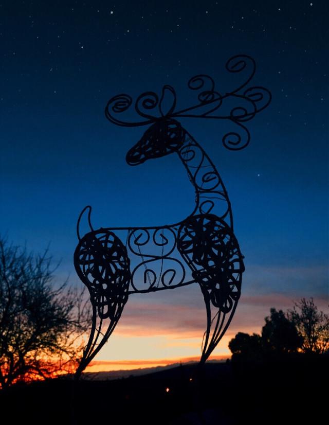 #freetoedit #interesting #sunrise #silhouette #morning #deer #landscape #christmasiscoming