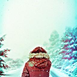 ircfrigidcold frigidcold snow snowflake pines freetoedit