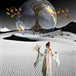 freetoedit tree illusion magical butterflies