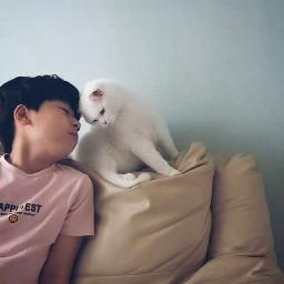 happycat freetoedit
