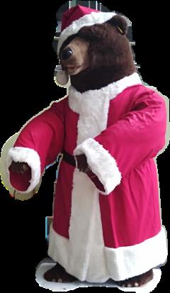 bear bär nikolaus freetoedit