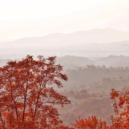 pctheworldaroundme theworldaroundme forest mountains autumn