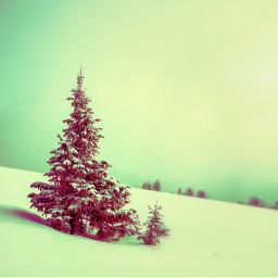 ircwhitechristmas whitechristmas christmas freetoedit