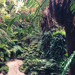 nature naturelovers natureaddict natureporn natureart