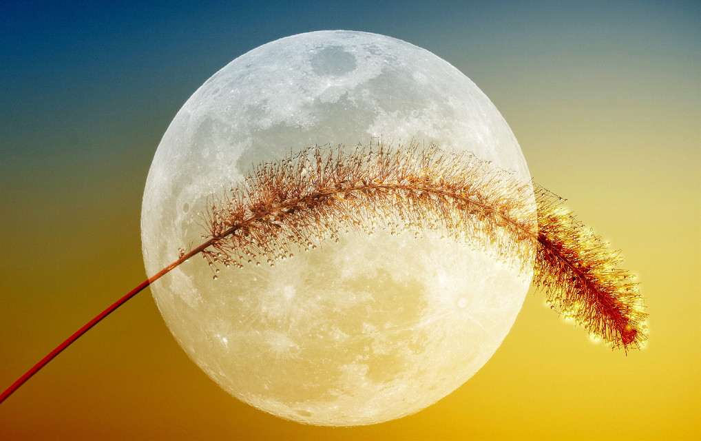 Under the spell of the moon... #moon #fullmoon #colours